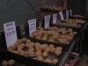 SE Essex Potato Day 2011