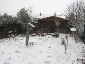 SNOW in garden Sun 20 Jan 2013