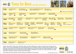 treesforbees2_001